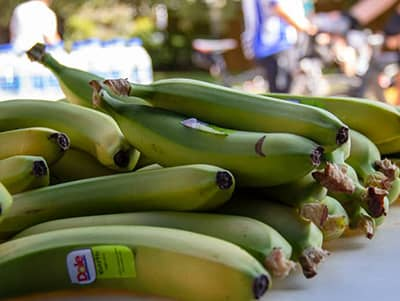 Bananas at the rest stop