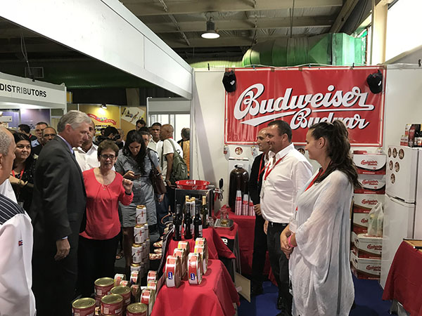 Budweiser Budvar is successfully conquering the Cuban market