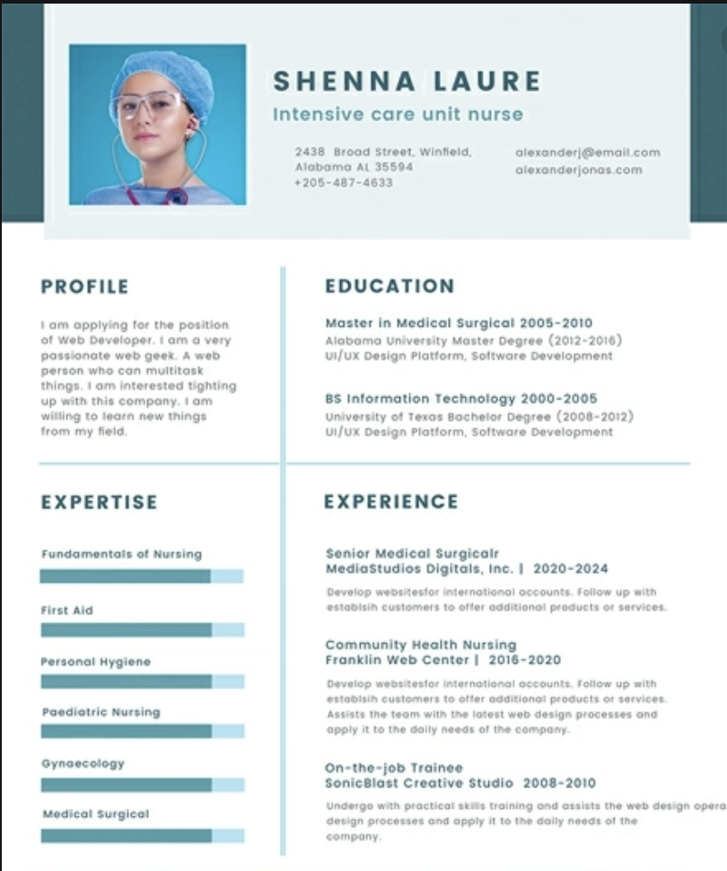 travel nurse resume fancy