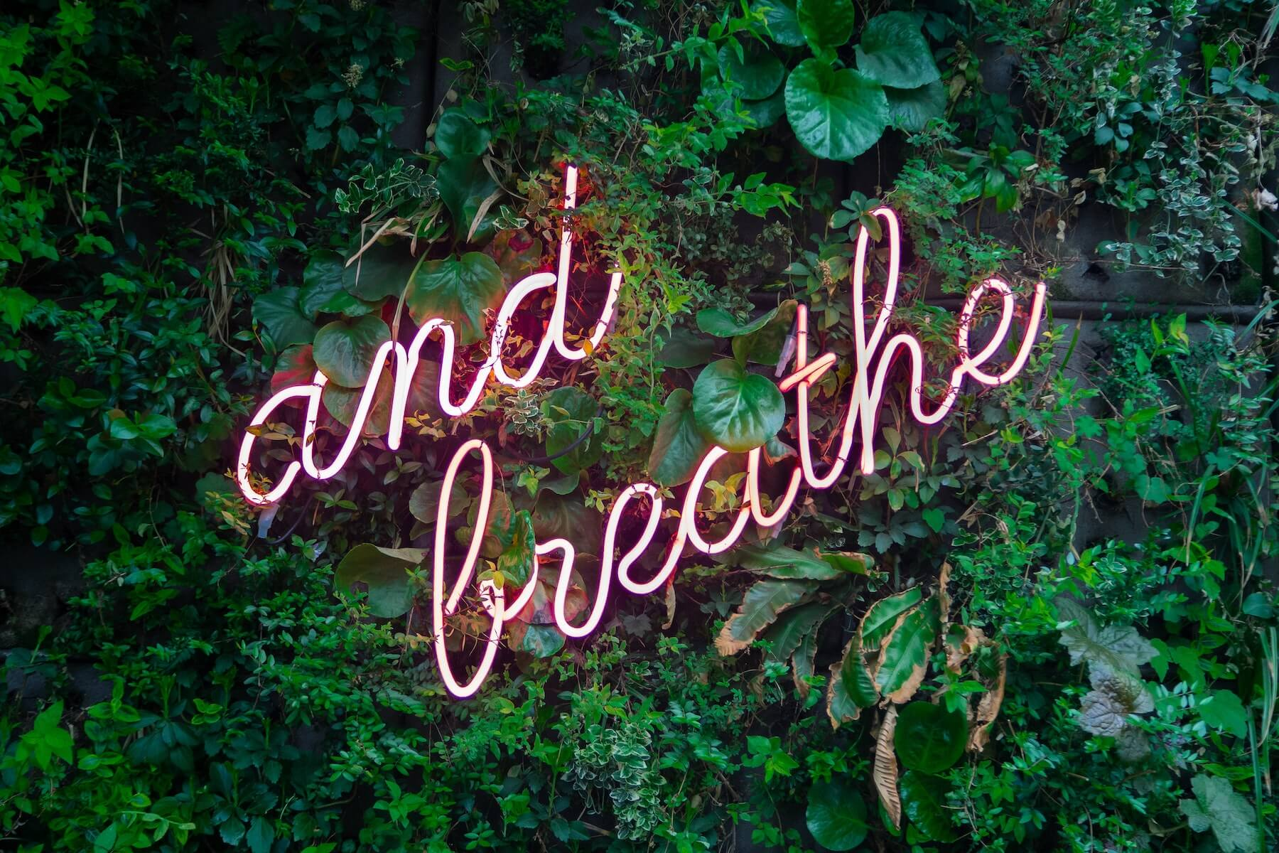 green living wall with neon words and breathe nurse stress unwind after work