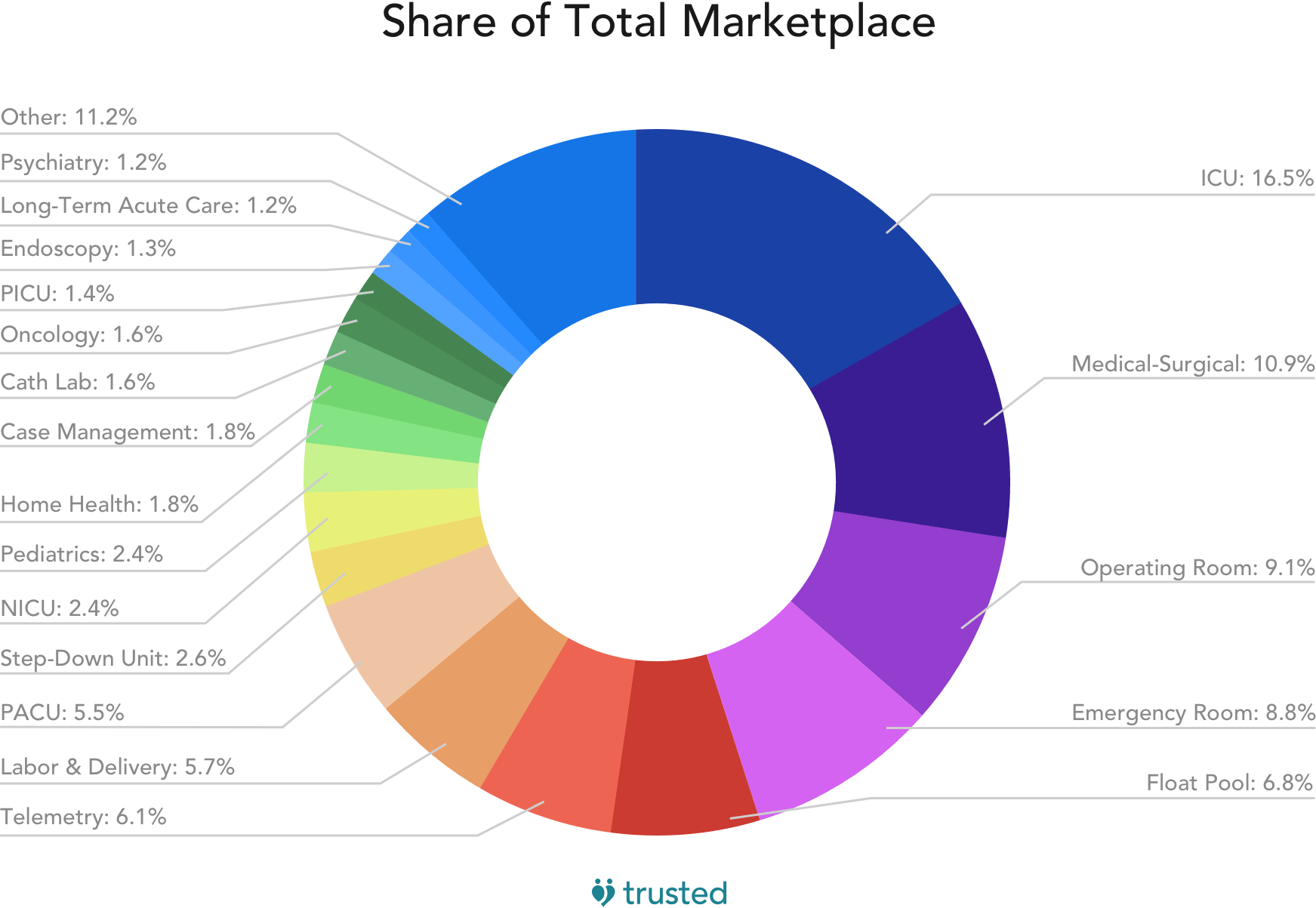 pie graph showing share of total marketplace in nursing units