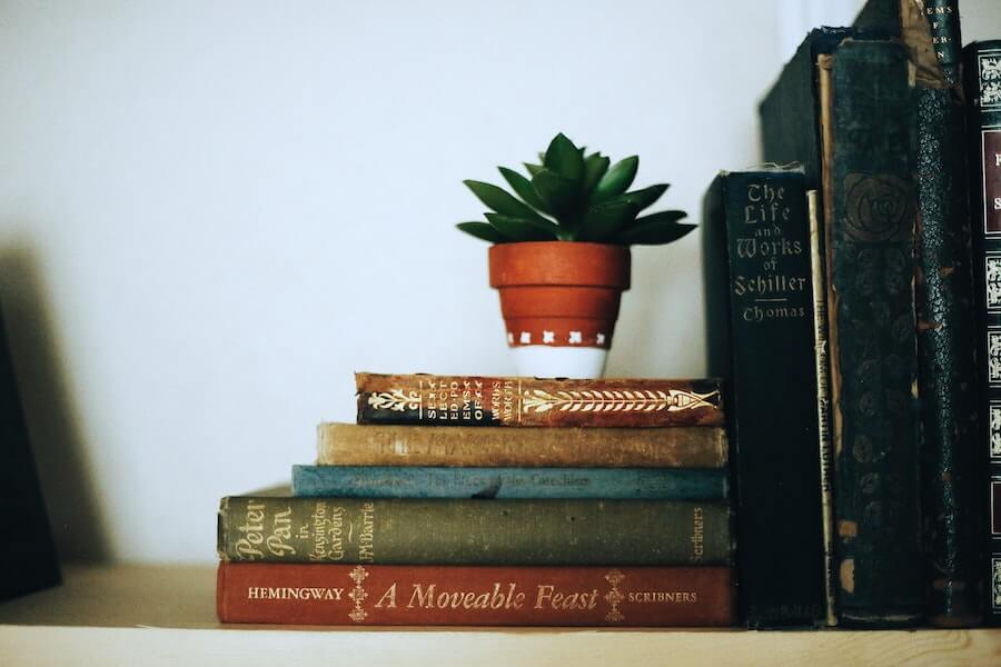 bookend books with plant on top stress in nursing bookend the day