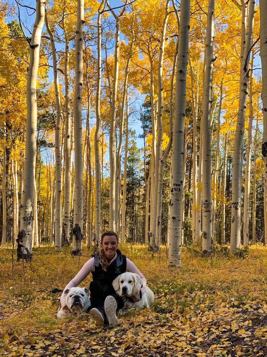 colorado travel nursing with dogs