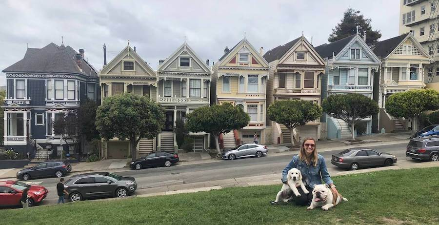 san francisco travel nursing with dogs