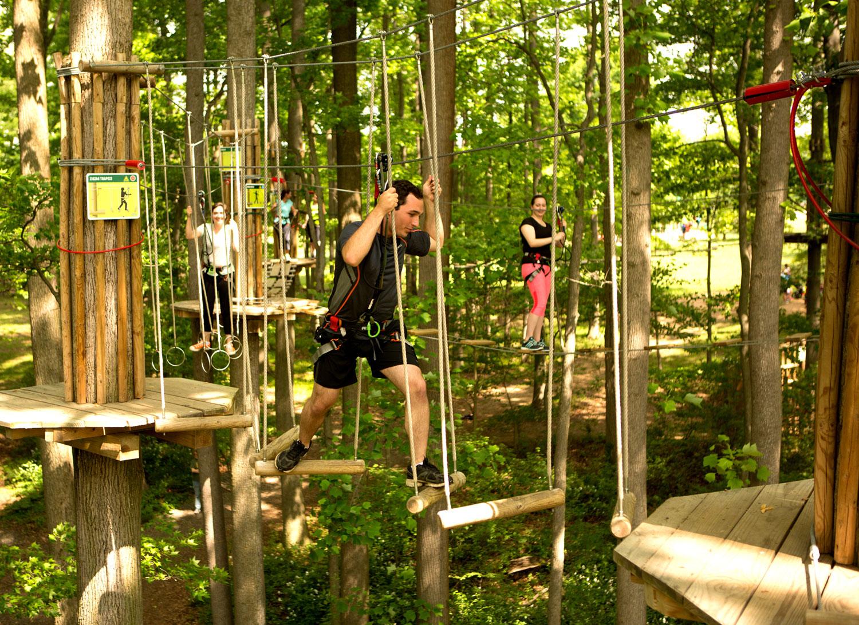 Go Ape Treetop Adventure Course Opens in Plano - Plano Magazine