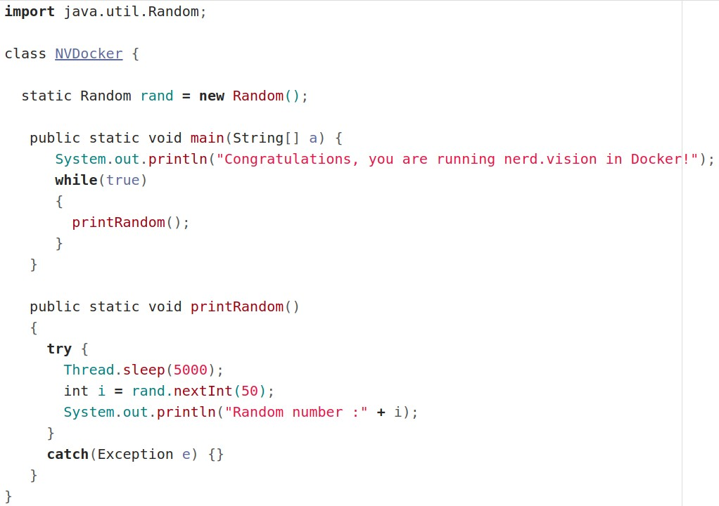 Configuring nerd vision to automatically run in Docker   nerd vision