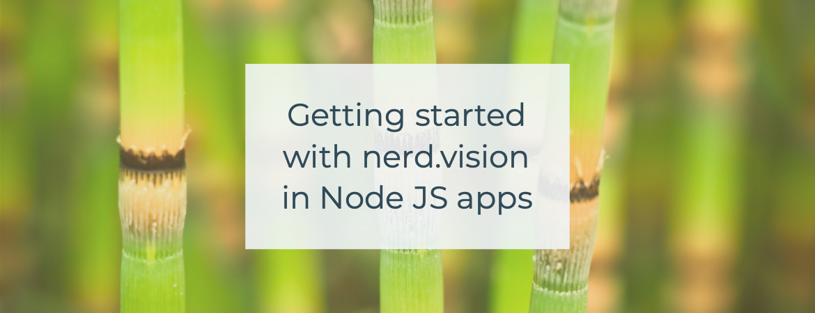 Getting started with nerd.vision in Node.js applications