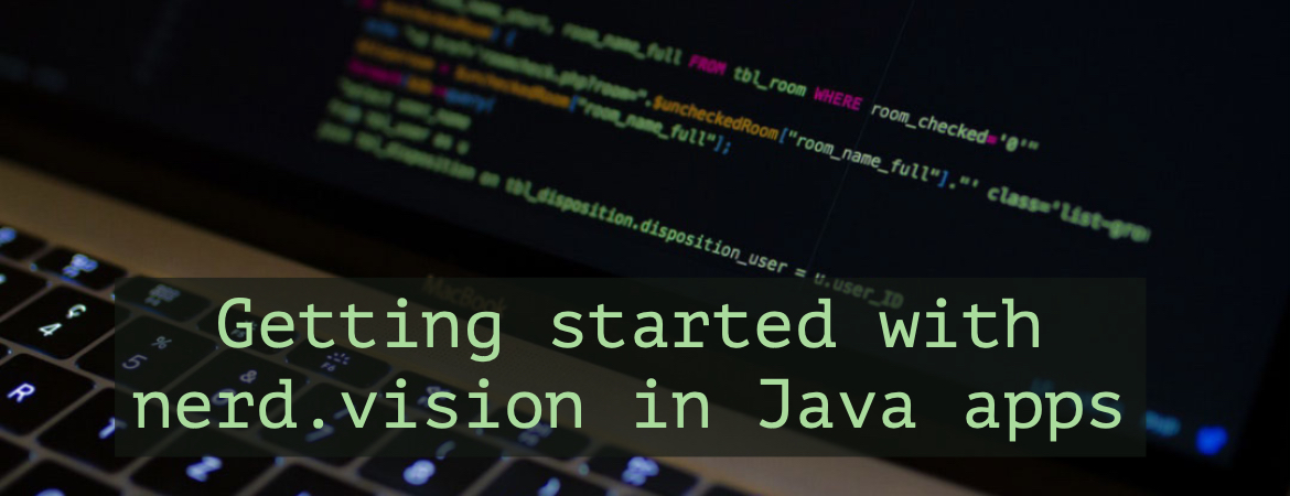 Getting started with nerd.vision for Java applications