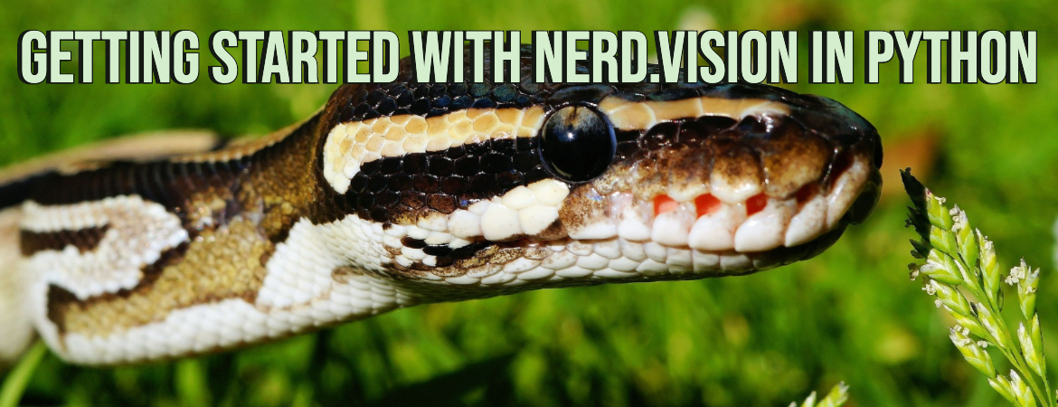 Getting started with nerd.vision in Python