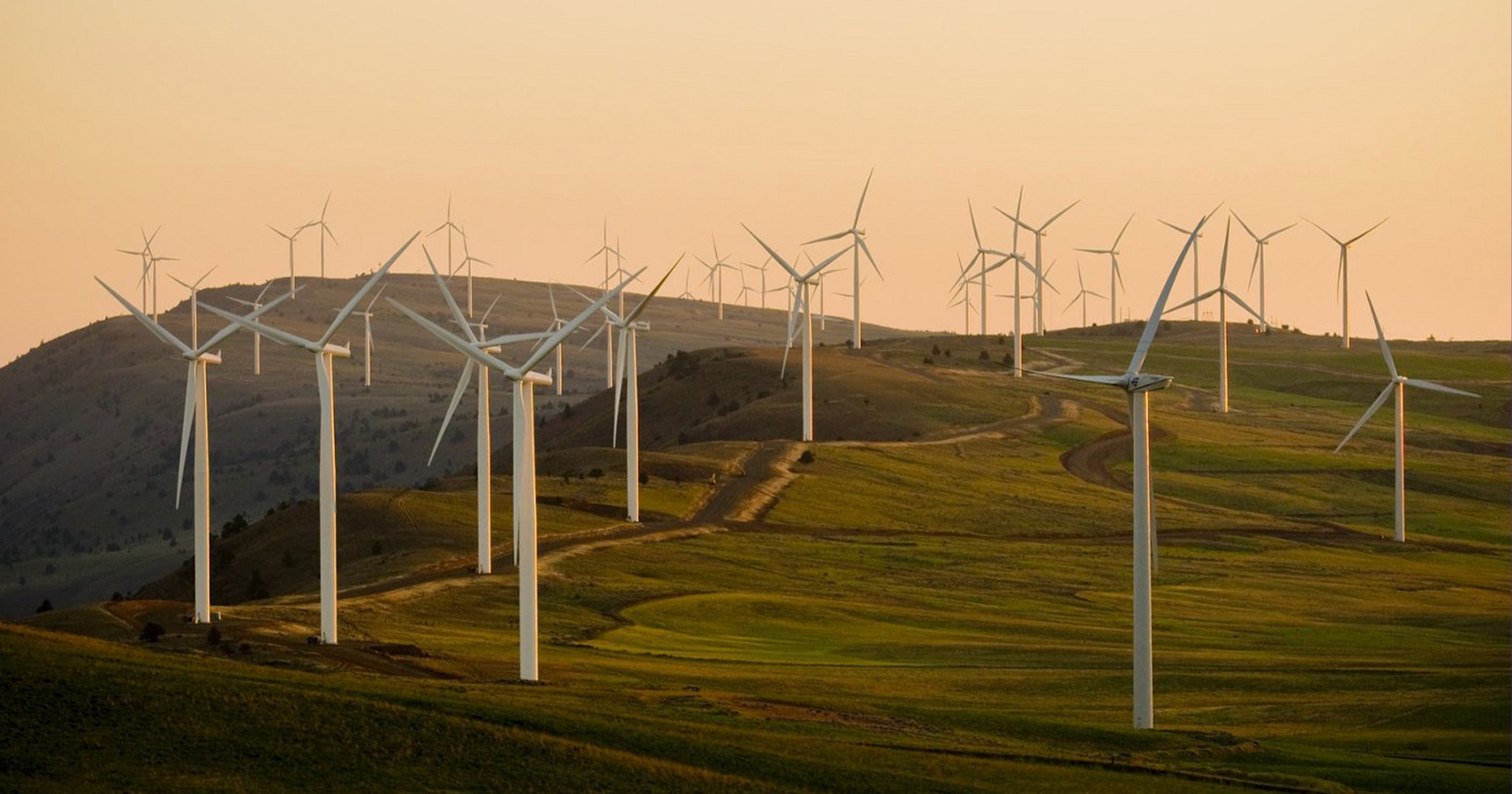 The growing green investment movement