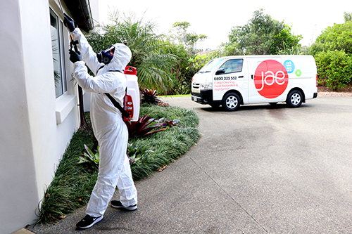 pest control New Zealand