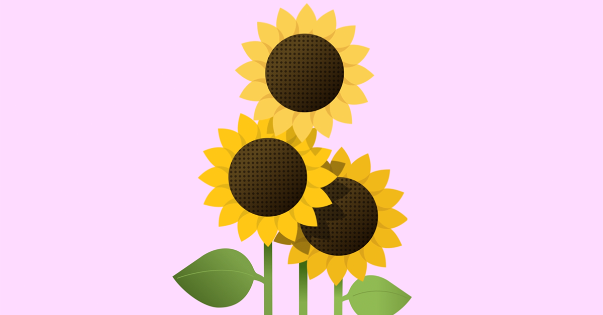 Create Wealth and Give Hope with Sanlam Indie and The Sunflower Fund