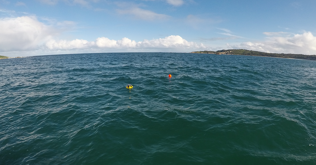 Wave Swell Energy Deploys a Spotter wave buoy to support their King Island marine energy project.