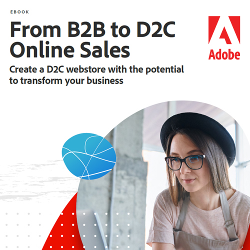 From B2B to D2C Online Sales