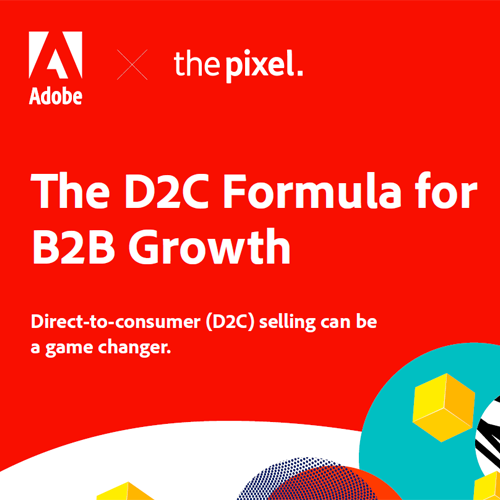The D2C Formula for B2B Growth Infographic