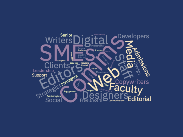 Word cloud showing common Higher Ed content job titles