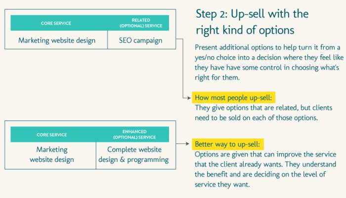 Different ways to present up-selling within a proposal document.