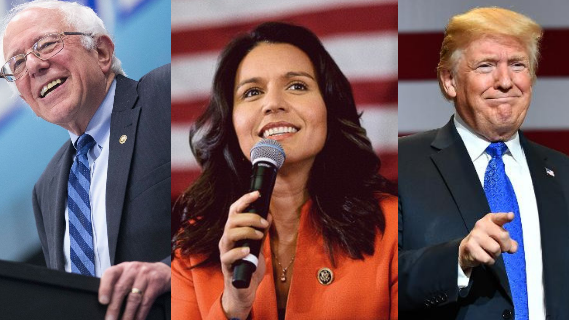 IVN POLL: Independents Like Bernie, Tulsi, and Trump for 2020