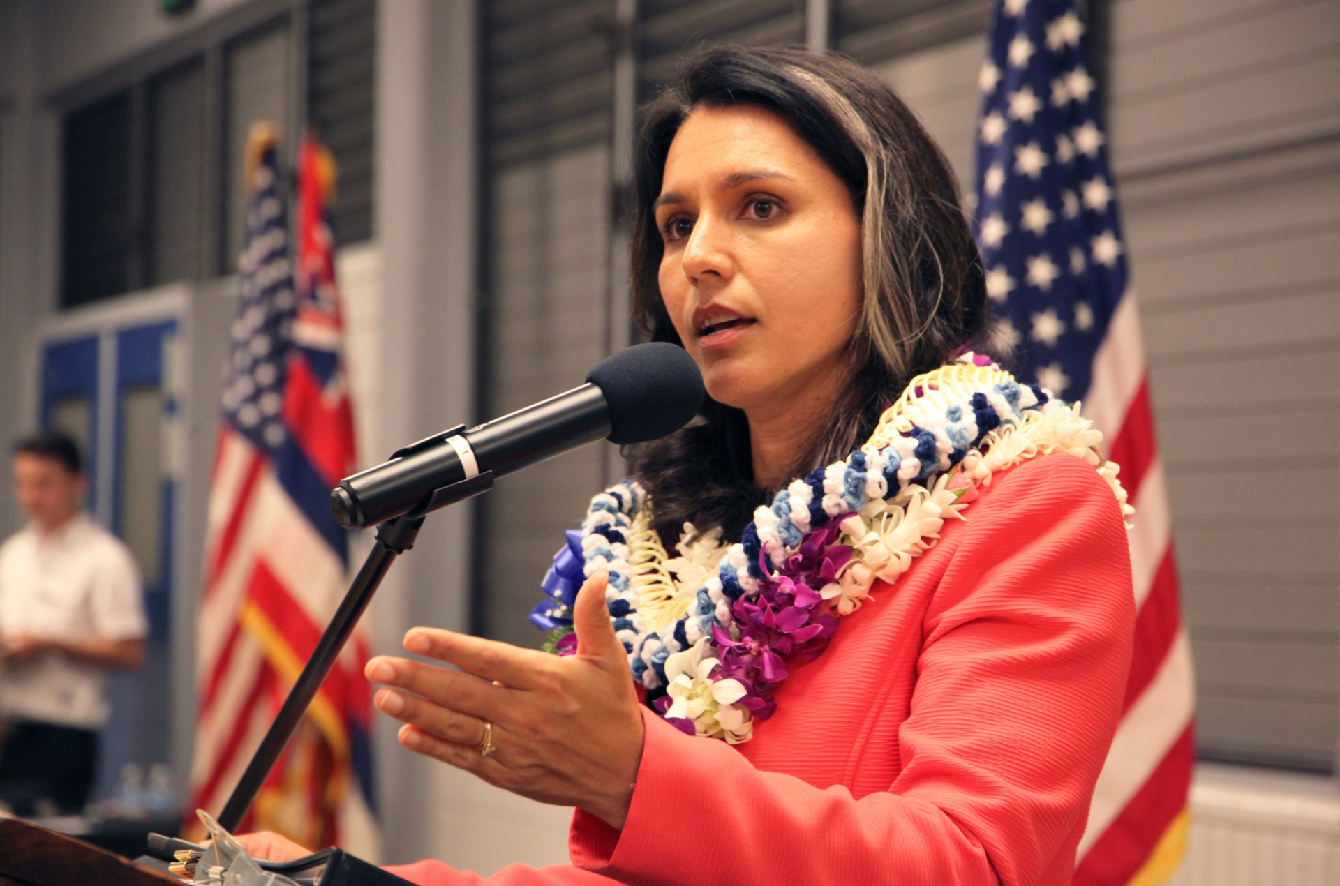 4 Reasons Tulsi Gabbard Could Shock the Media, Party Establishment | Independent Voter News
