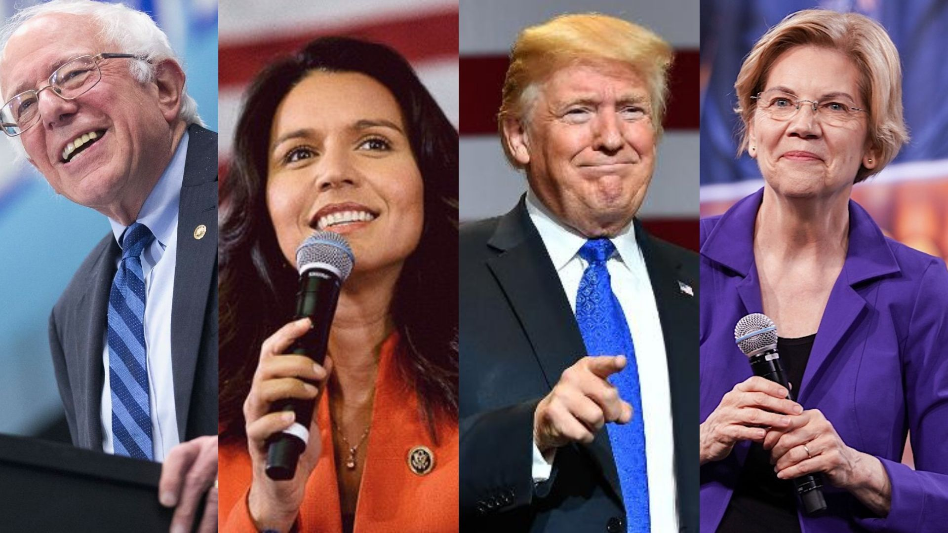 4 Important Take Aways from the IVN 2020 Presidential Survey