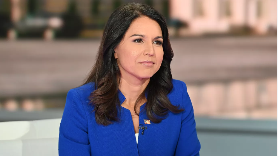 Tulsi Gabbard Tells DNC Candidates to Stop Fundraising Off Impeachment