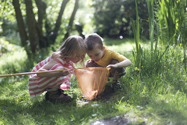 outdoor adventure for kids in highgate woods