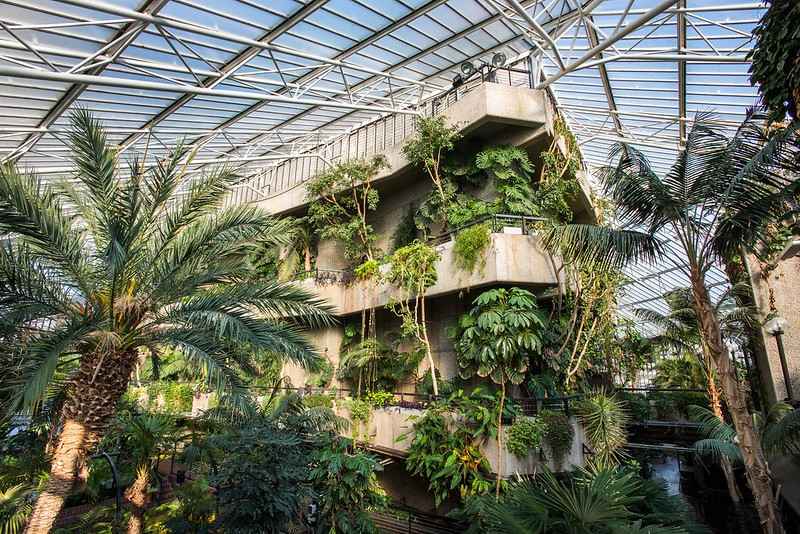 The indoor jungle at the Barbican