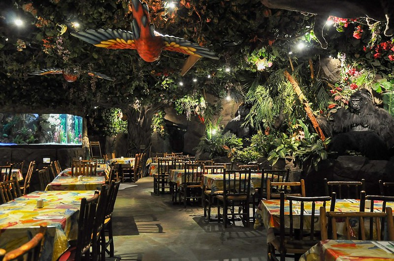 The Rainforest Cafe is wild!