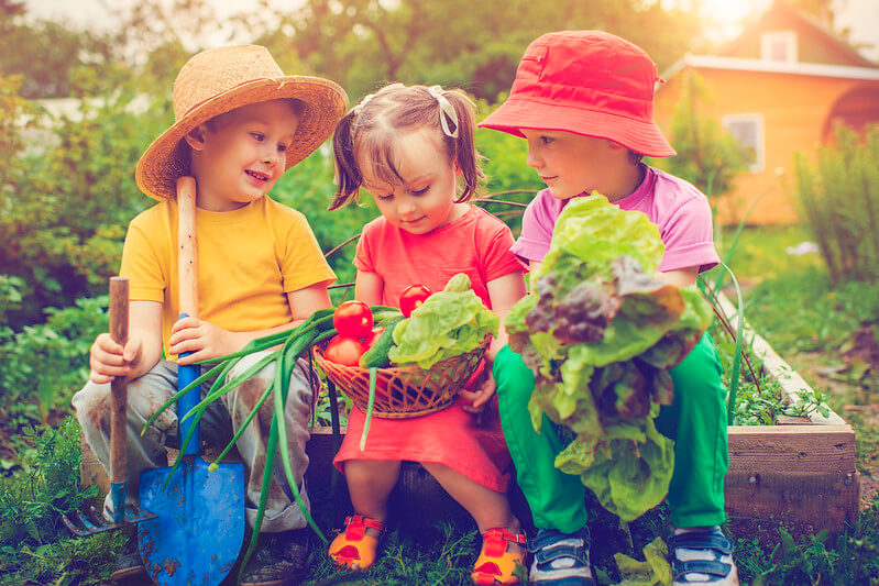 kids planting vegetables in garden