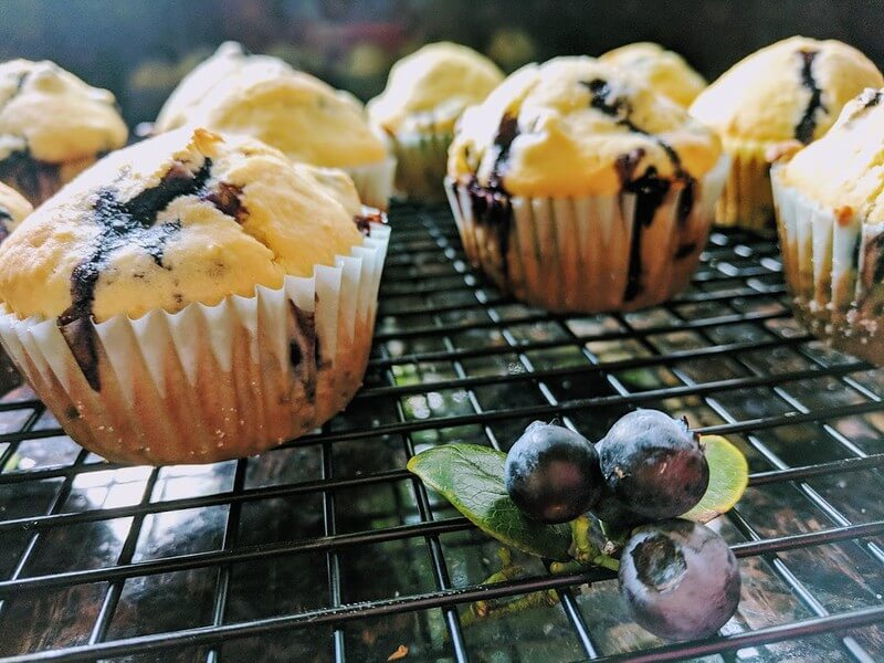 muffin recipe for toddlers