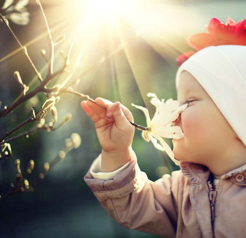 Baby smelling flower