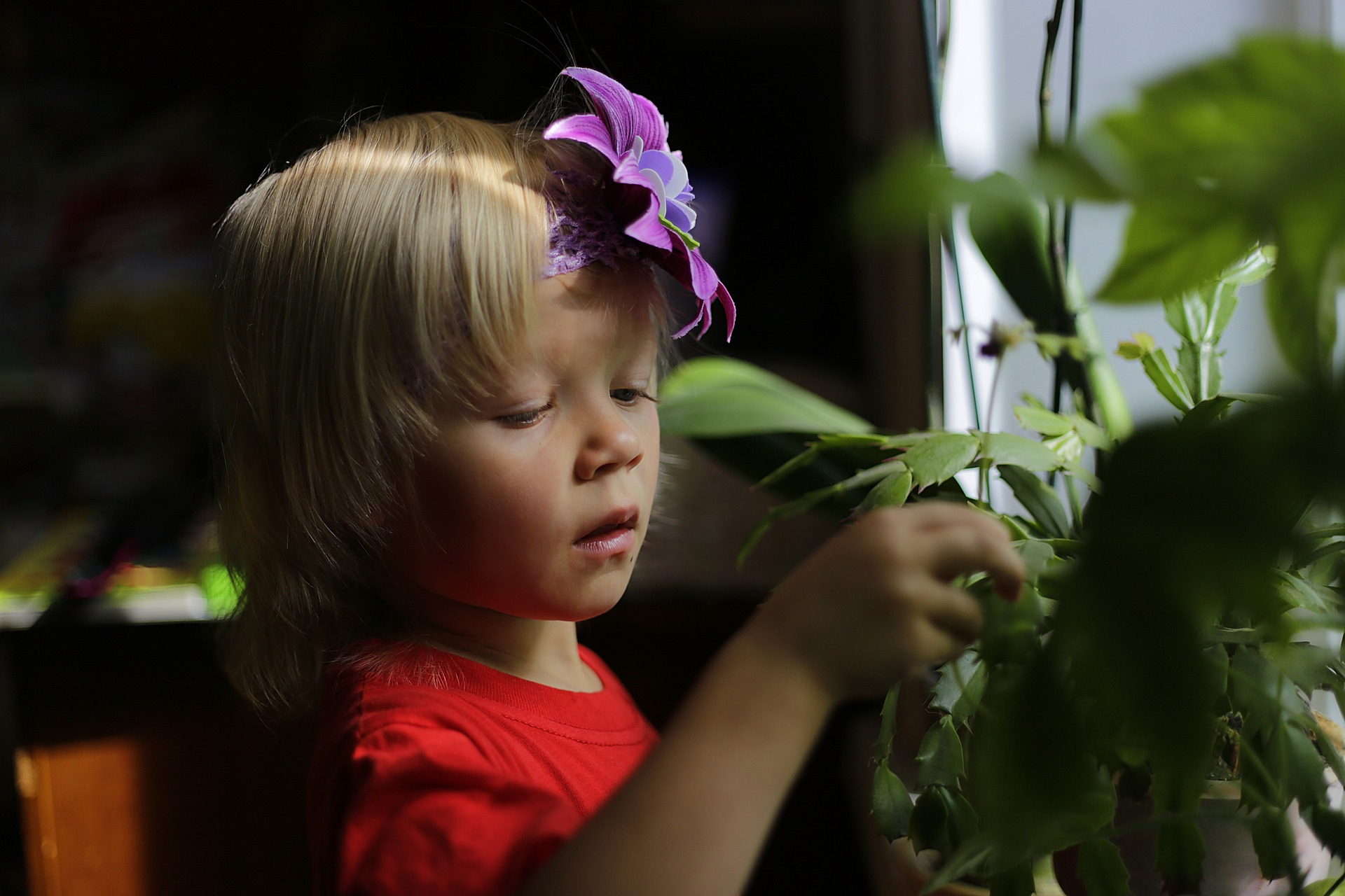 little boy with purple flower in his hair looking at plants