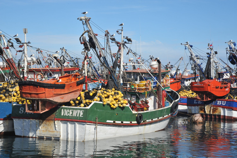 Boats+in+Talcahuano+2.jpeg