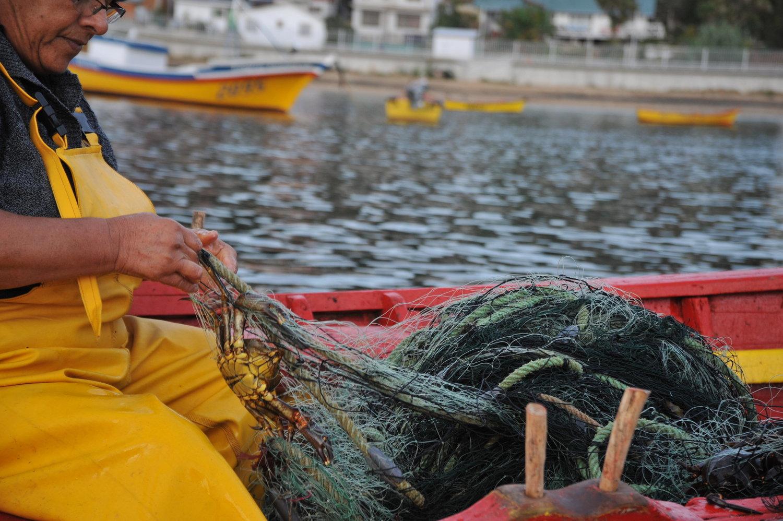 Fishermen+in+Caleta+Coliumo+3.jpeg