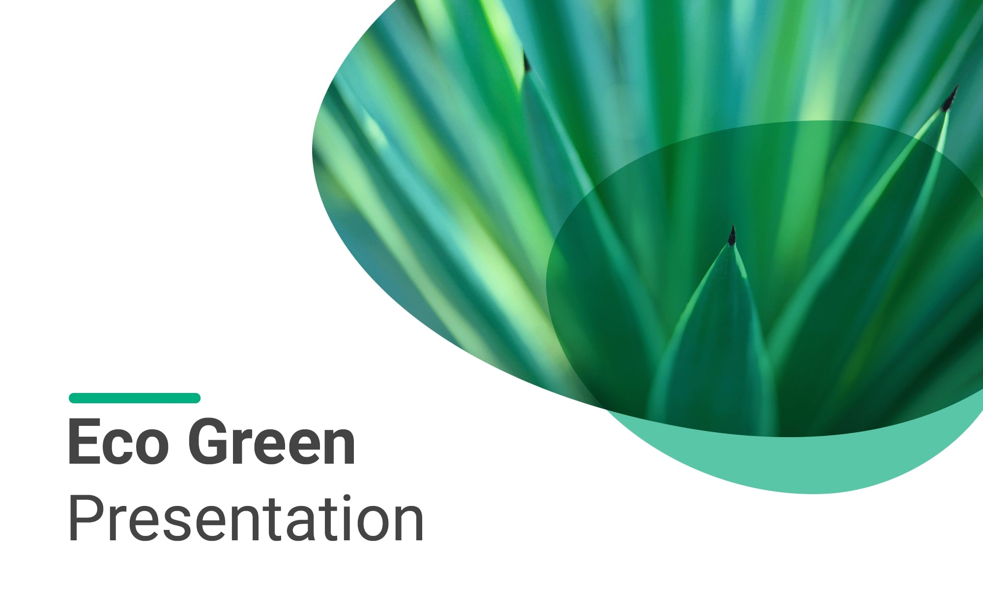 Plantilla de presentación ecológica