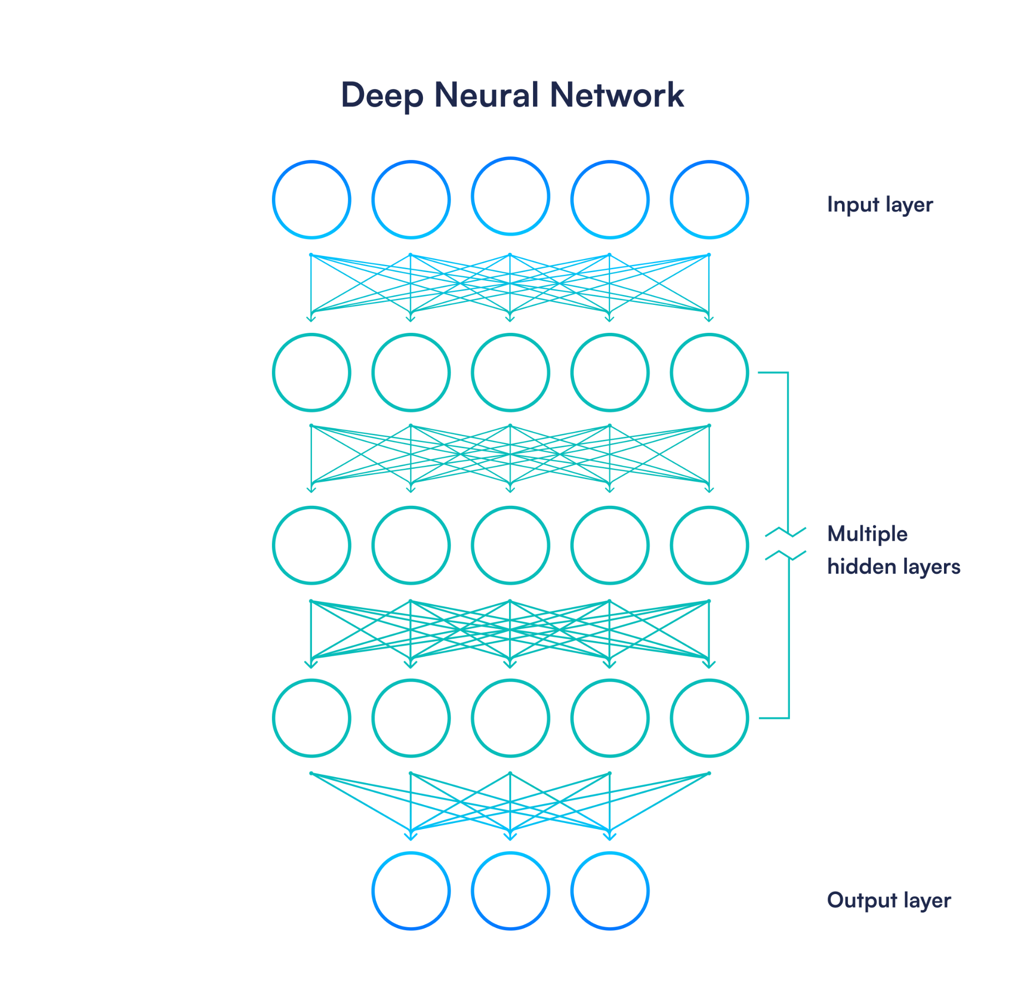 Visual representation of a deep neural network, with an input layer at the top 3 hidden layers in the middle and an output layer at the bottom.