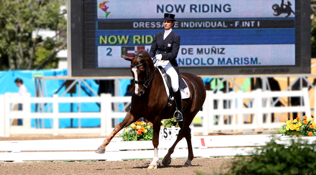 Woman on a horse at a horse show.