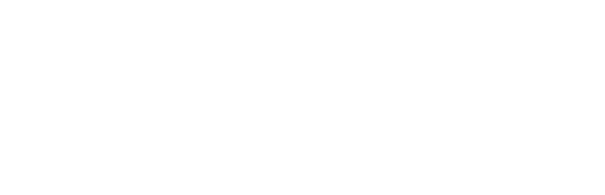 The New Division