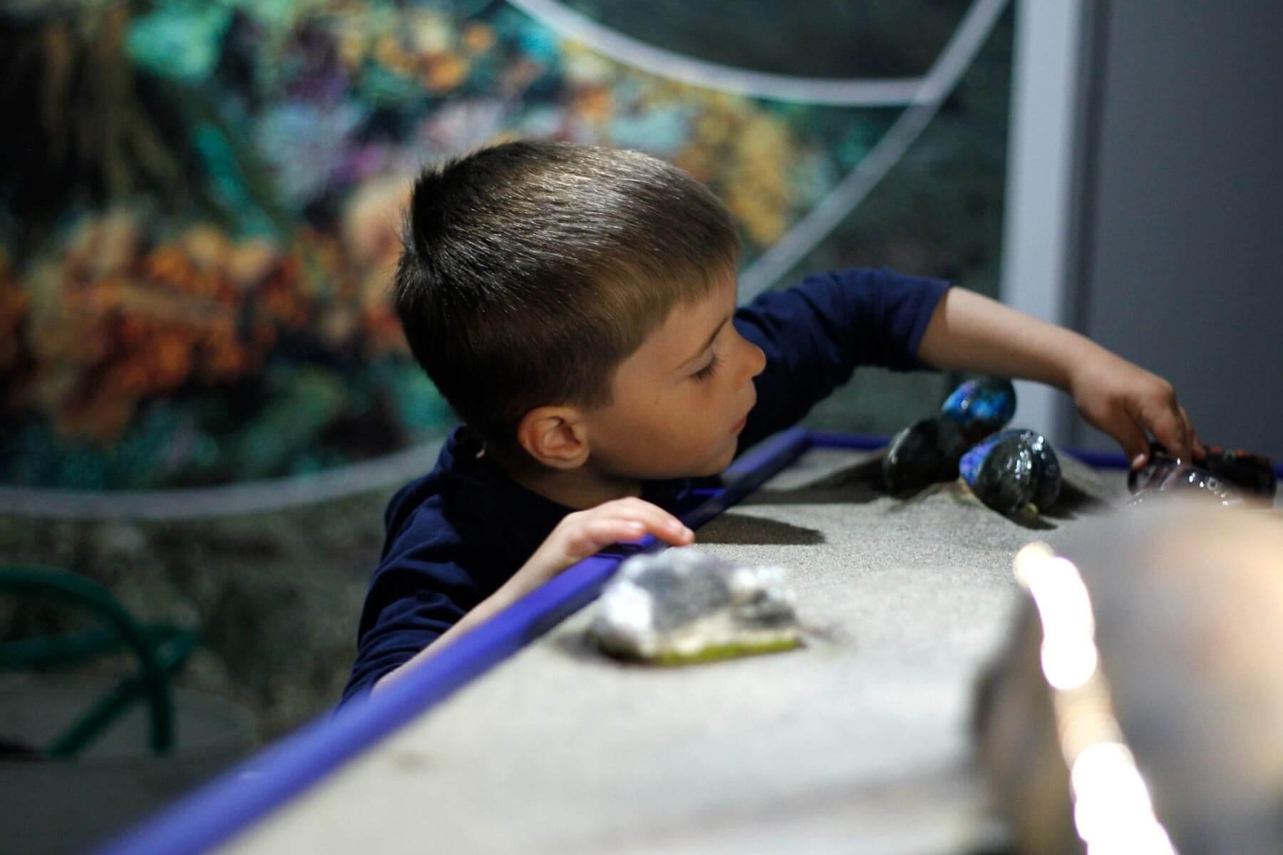Gutt leker i vitensenter utstilling.