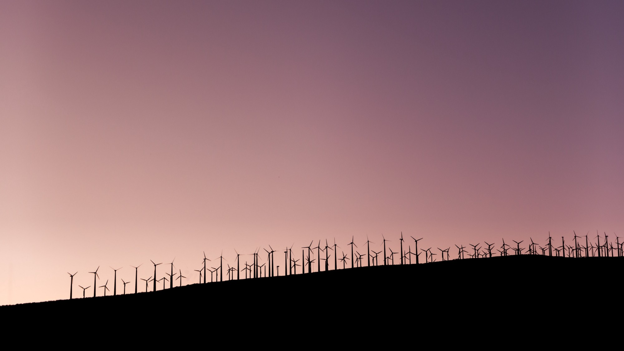 8 fascinating facts about renewable energy