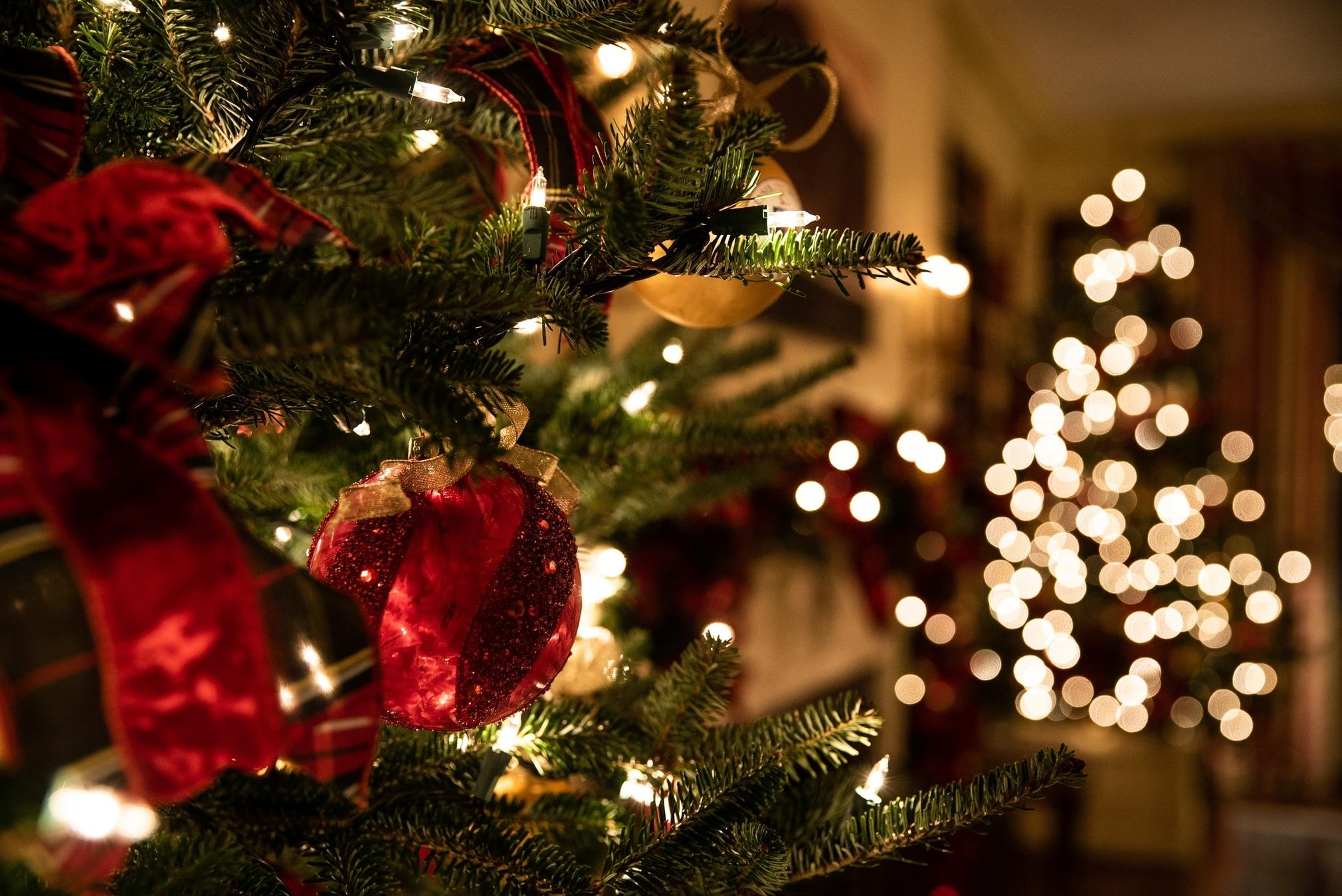 Make Your Christmas Green