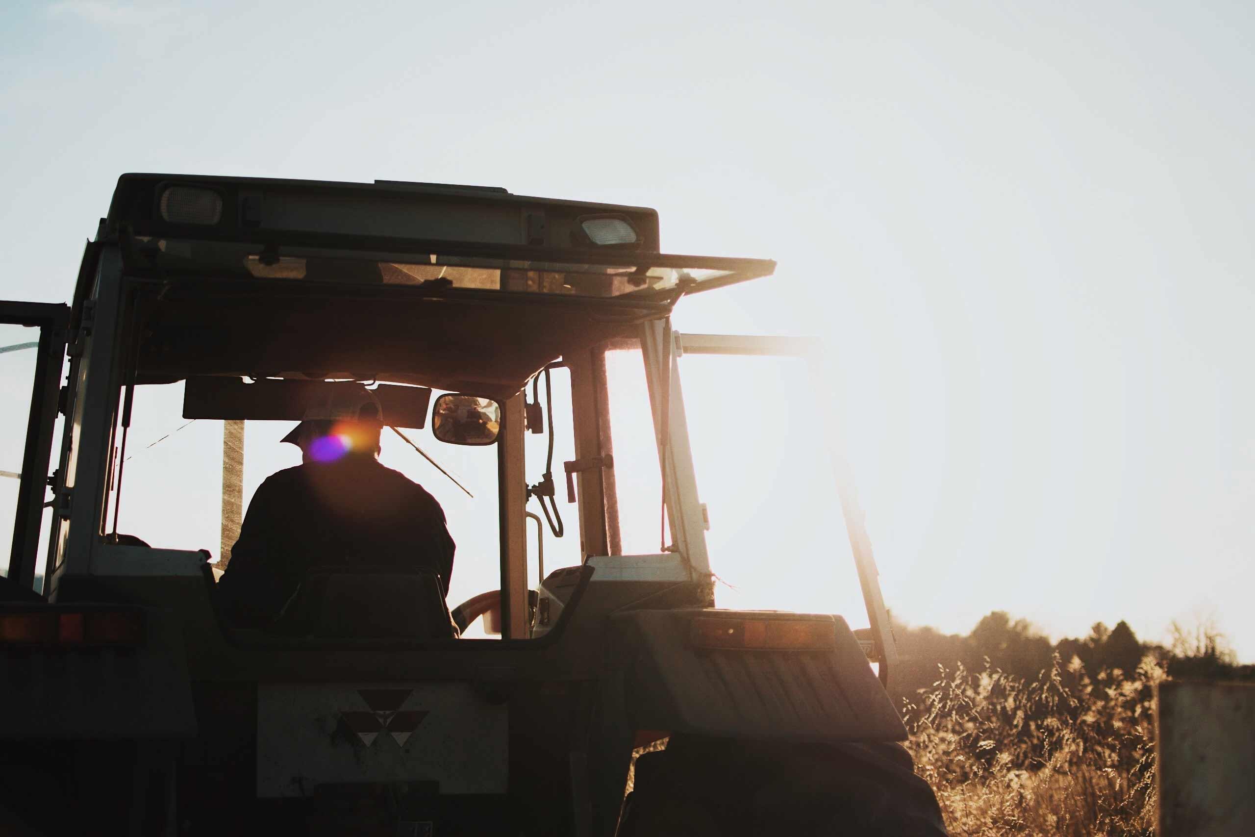 Farming The Sun: Solar As An Alternative Crop