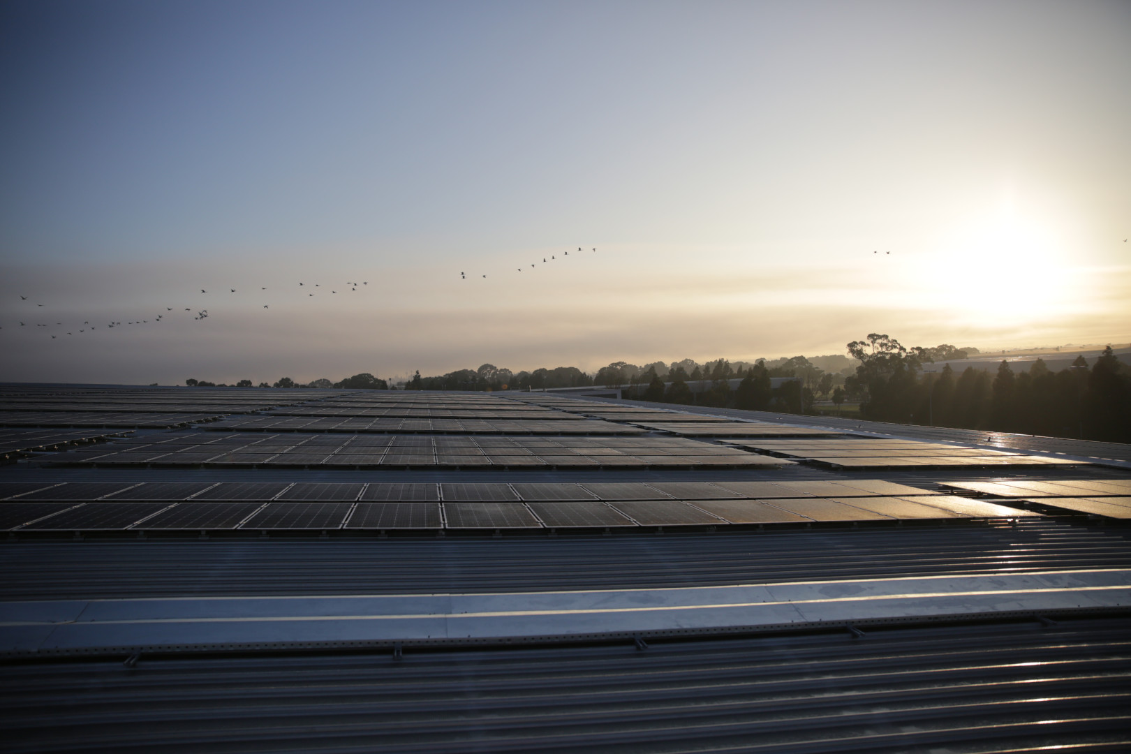 How much does a solar panel actually produce?