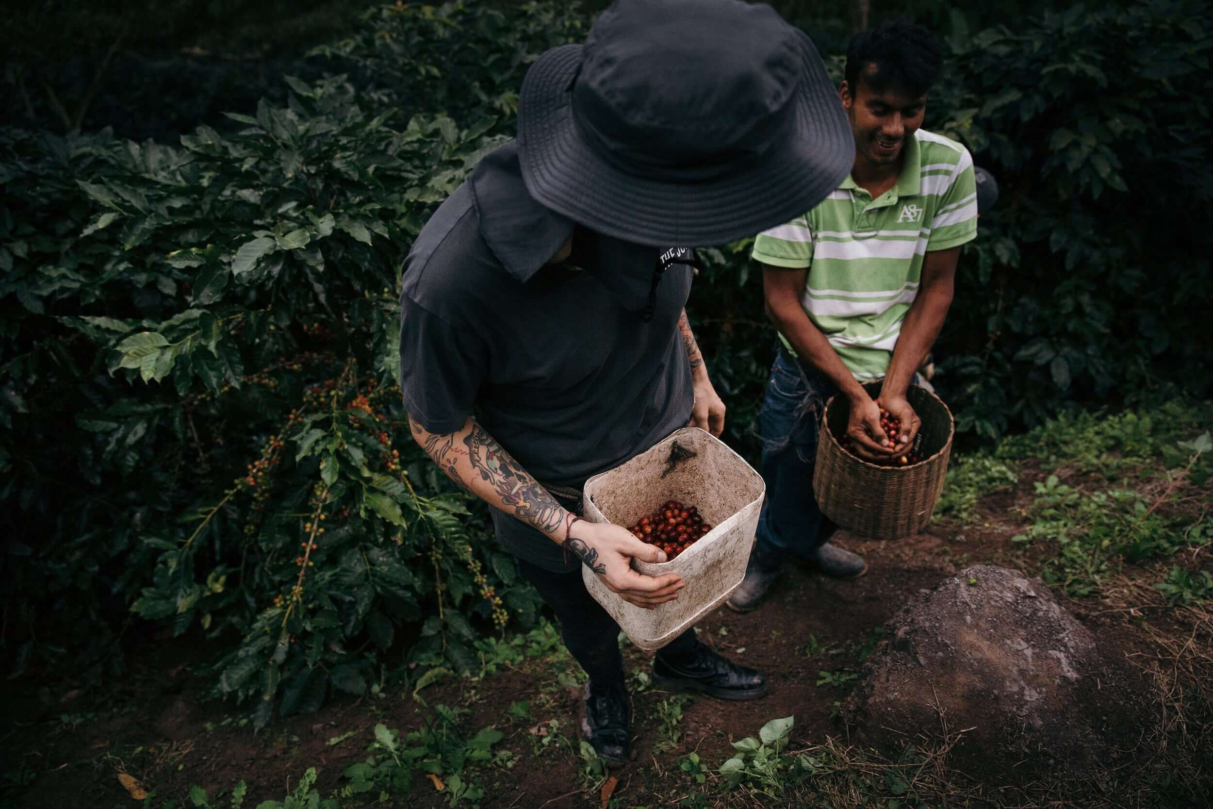 Juicer & farmer working together at a coffee farm in Honduras