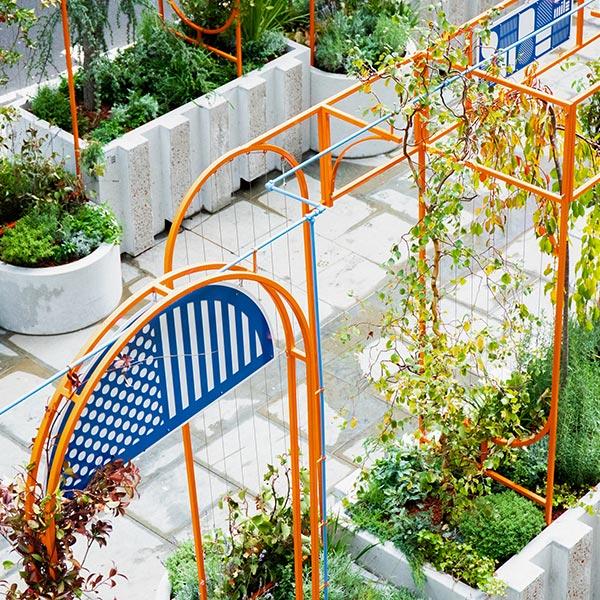 Overhead shot of garden