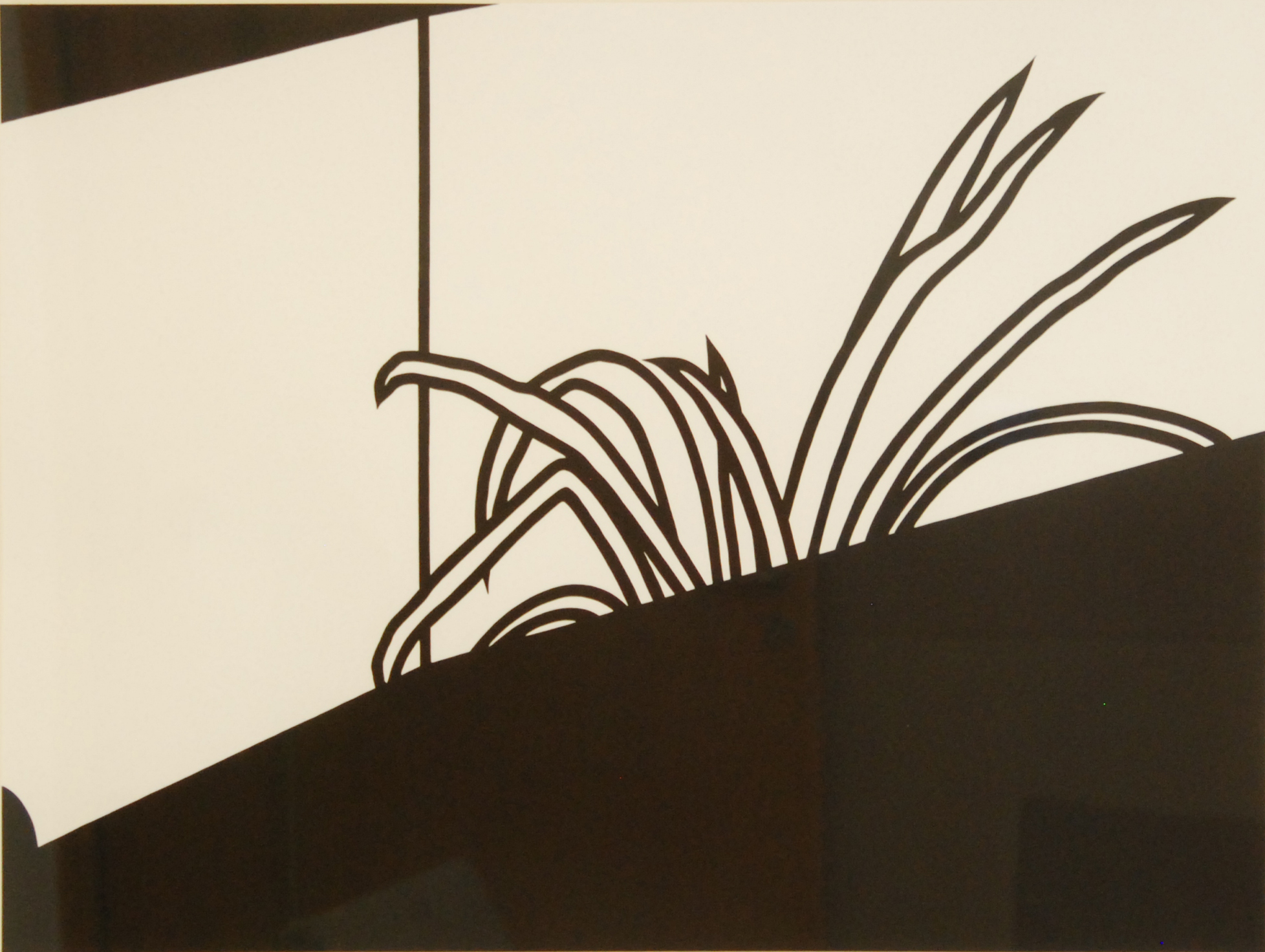 Patrick Caulfield - Spider Plant