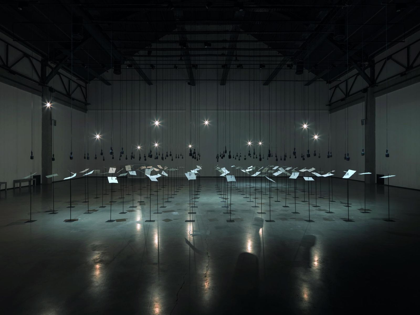 Shilpa Gupta installation