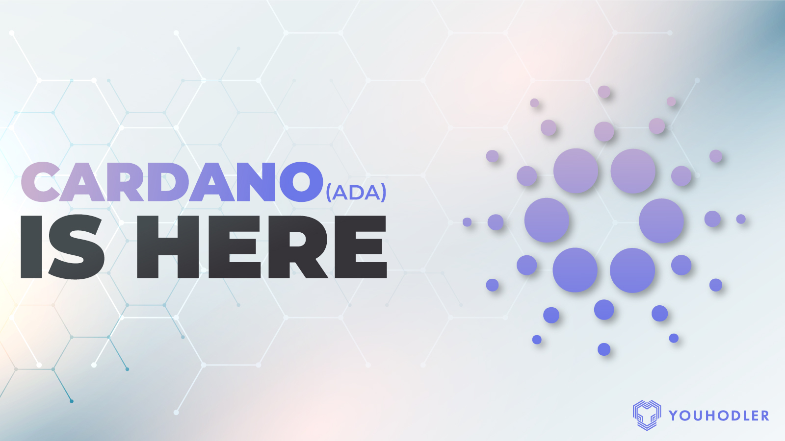 """A digital image says the text """"cardano is here"""""""