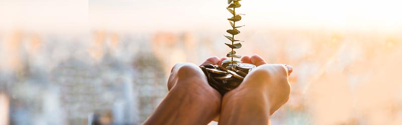Conheça 4 opções para quem quer começar a investir