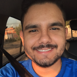 Pedro Davi Furtado Borges